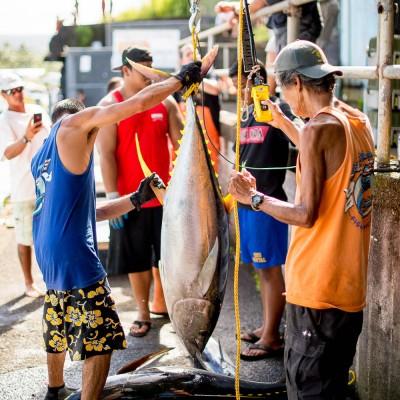 Suisan Ho`olaule`a Fishing Tournament- Image 3991