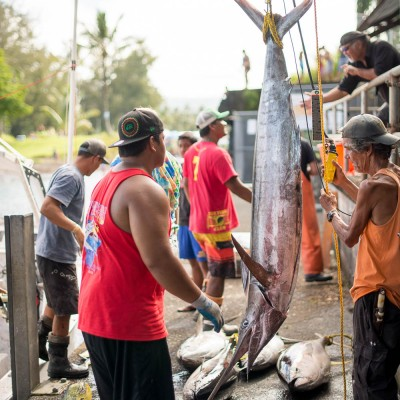 Suisan Ho`olaule`a Fishing Tournament- Image 4016