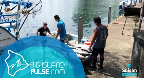 BIP FISHERMAN INTERVIEW LEAVIING SUISAN SITE